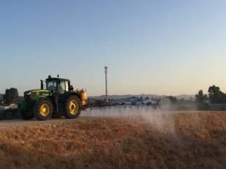 Distrito Sanitario Aljarafe Sevilla Norte confirma dos casos de fiebre 'Q'.