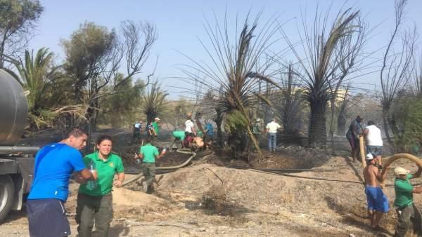 Extinción del incendio cerca de Oasis Park