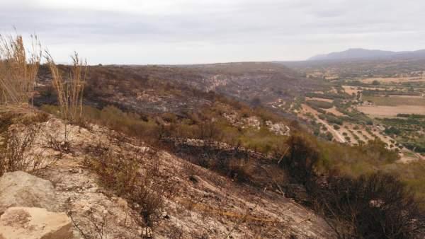 Incendio forestal en Petra