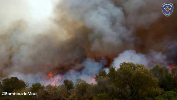 Incendio en Petra (Mallorca)