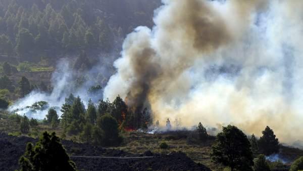 Incendio de La Palma