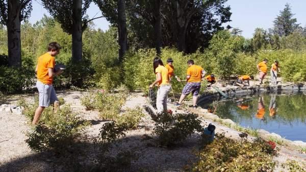 Algunos de los voluntarios que han participado en las acciones