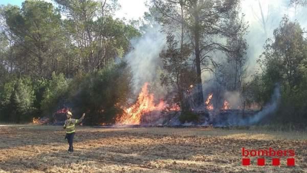 Bombero ante el incendio de Saus, Camallera i Llampaies (Girona)