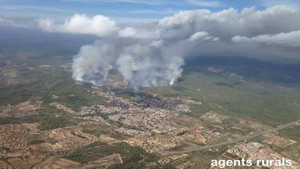 Incendio en La Pobla de Montornès (Tarragona)