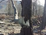 Zona quemada en el incendio de Atarés (Huesca)