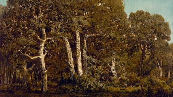 Théodore Rousseau - The Great Oaks of Bas-Bréau, 1864