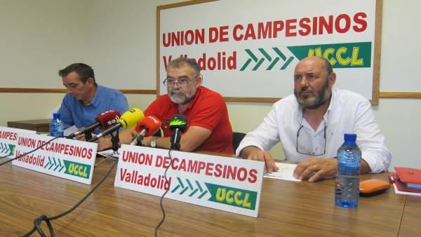 UCCL analiza la campaña de cereales en Valladolid