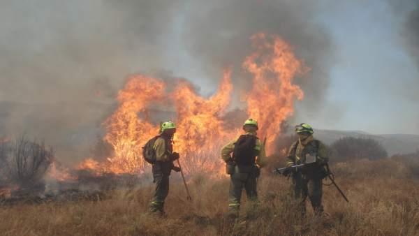 Brigadistas trabajando en las tareas de extinción de un incendio forestal