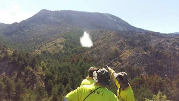 El incendio ya se ha dado por controlado y ahora solo queda extinguirlo.
