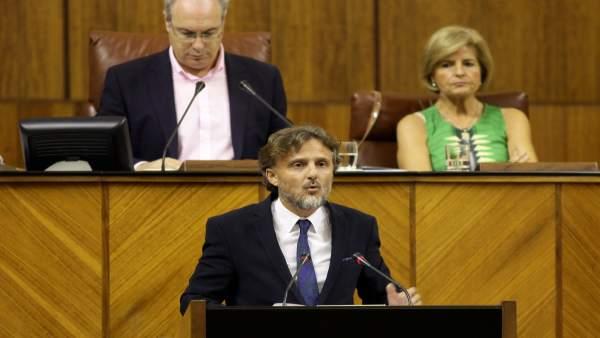 El consejero de Medio Ambiente, José Fiscal, en el Parlamento