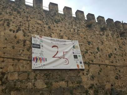 Cartel anunciador dei 25 aniversario de los Encierros Infantiles de Sepúlveda