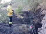 Controlan un incendio que se originó durante la madrugada en La Culata