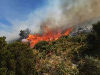 Vista del incendio en el Valle del Jerte