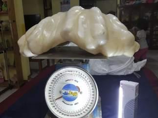 Perla Filipinas
