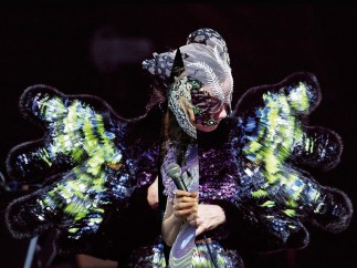 Björk, Vulnicura album art