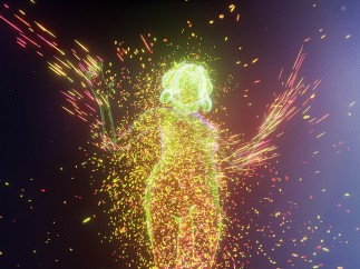 Björk, Notget VR