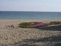 Playa de La Antilla (Lepe), la más accesible