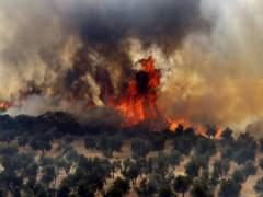 Cuatro incendios forestales siguen activos en Andalucía, Galicia, Navarra y Castilla-La Mancha