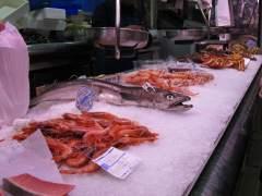 ¿Cuántos de estos pescados sabes reconocer?