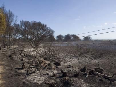 Incendio en Menorca