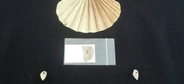 Collares localizados con más de 13.000 años de antigüedad