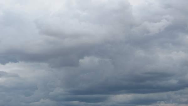 La pluja afecta 8.000 hectàrees de cultiu en la Comunitat i causa danys de més de 14 milions