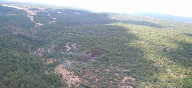 Masa arbolada, árboles, monte, pinos