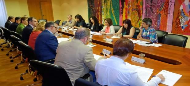 Reunión del Consejo de Cooperación al Desarrollo de CyL