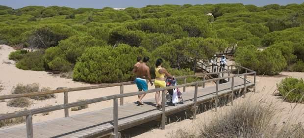 Pasarela hacia las playas de Huelva