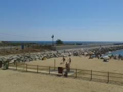Barcelona mantendrá la playa para perros de la playa de Llevant el próximo verano