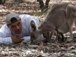 Wild Frank en Australia