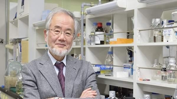 Yoshinori Ohsumi, guardonat amb el Nobel de Medicina 2016