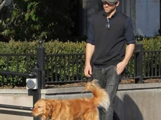 Ryan Reynolds también adopta