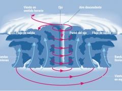 Radiografía de un huracán