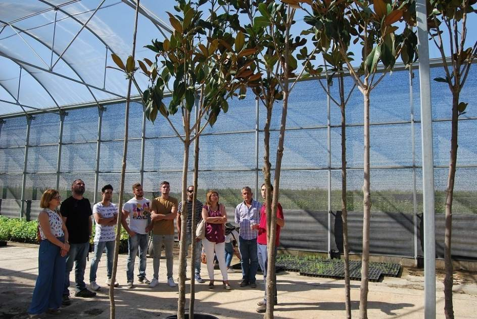 El vivero de don benito badajoz suministra m s de 100 for Viveros en badajoz