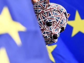 Un perrito británico pro-UE