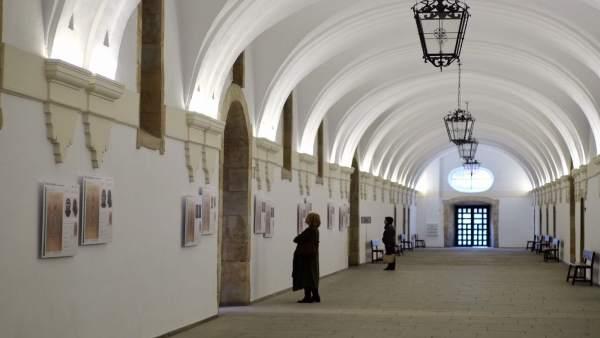 La exposición 'Evolución Humana: un largo viaje'