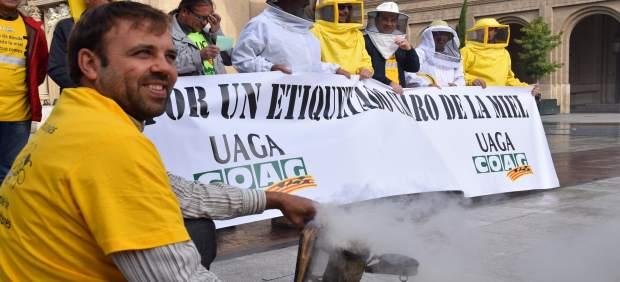 Los apicultores aragoneses se han manifestado hoy en Zaragoza.