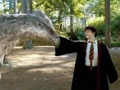 J. K. Rowling revela que existen dos Harry Potter