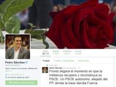 """Pedro Sánchez pide que la militancia """"recupere pronto"""" un PSOE """"alejado del PP"""""""