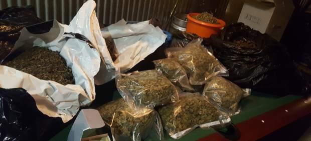 Precintan una asociación cannábica de Barcelona e intervienen 21 kilos de marihuana