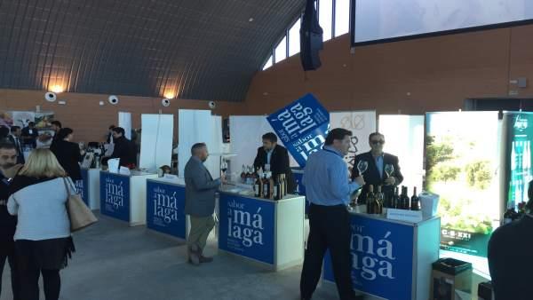 Wine EXperience Costa del Sol