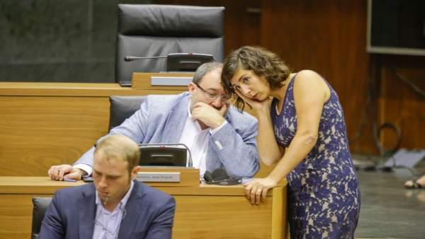 Laura Pérez, José Miguel Nuin y Jokin Castiella en el Parlamento de Navarra.