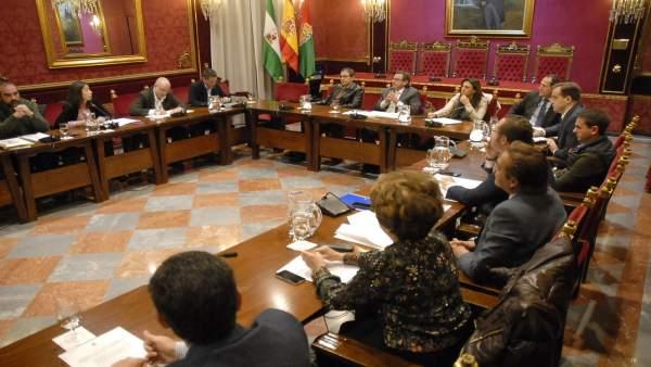 Comisión de Economía para la aprobación inicial de las ordenanzas