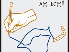 La mosca de la fruta traza trayectorias similares a los movimientos de los humanos al garabatear
