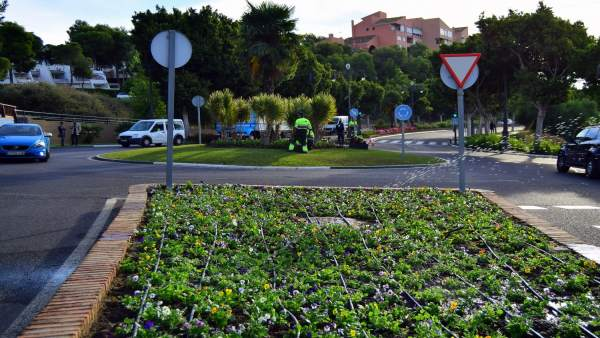 NP Y Fotografía El Ayuntamiento Embellecerá Las Zonas Verdes En Navidad Con 130.