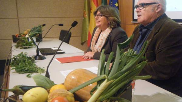 Jornada para presentar un nuevo 'abrazo' a la Vega de Granada