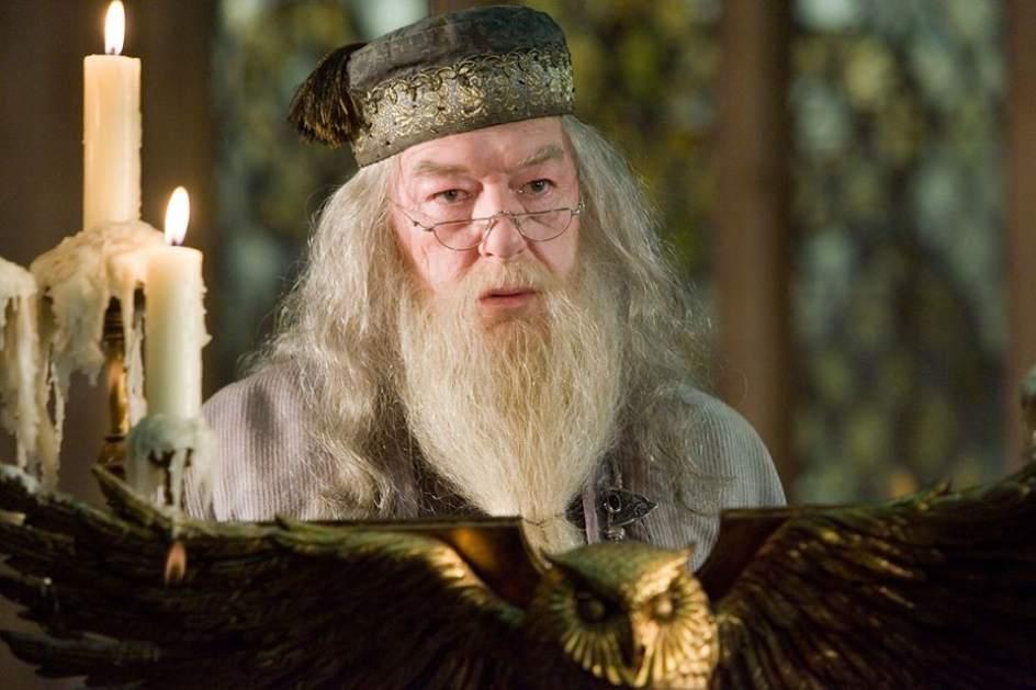 dumbledore el famoso director de howarts era gay -