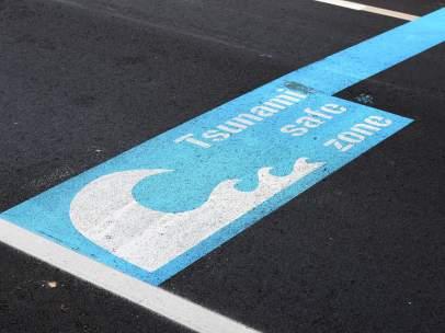 Alerta de Tsunami en Nueva Zelanda.