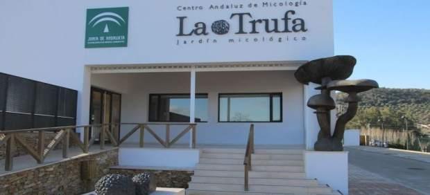 La junta organiza talleres y actividades en el jard n for Jardin micologico la trufa